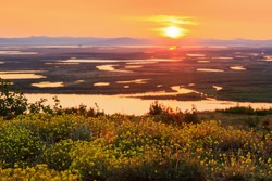 Scenic summer sunset in the Arctic. View from the hill to the river valley and tundra. Many wild yellow flowers. Blooming tundra plants. The nature of the polar region. Chukotka, Siberia, Russia.