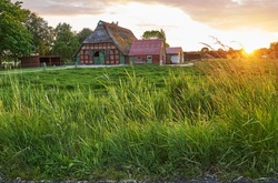 scenic sunset behind long fresh grass next to a traditional rural house in the district Wesermarsch (Germany) during summer