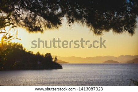 Scenic sunset view in the sea bay. Pine branches silhouettes on the pale orange sky background. Misty hills on the horizon and calm waters beneath