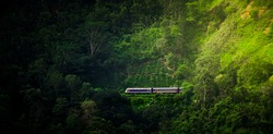 Scenic Train Ride in Ella through beautiful lush green forest and tea estates, blue train coming out of the ella demodara railway loop in the morning light.