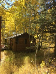 Scenic vertical shot of a rustic cabin in the woods surrounded by golden fall colors