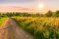 Scenic view at beautiful sunrise in a far misty valley, bright crimson cloudy sky, flowers and grass , white mist , trees and golden sun rays with glow, summer morning field landscape