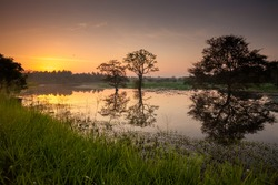 Scenic view at mirror of big lake in Sri Lanka during sunrise