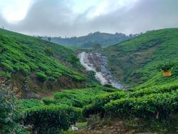 Scenic view from kolukkumalai, suryanelli tea estate, Tamil Nadu. Awesome climate, chilling.