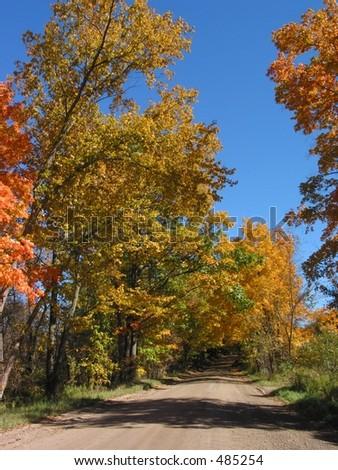Scenic view in Autumn - Portrait