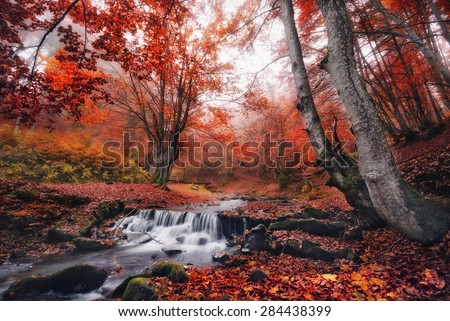 Scenic view misty autumn landscape with beautiful waterfall at mountain river in the forest with red foliage.Trees with red leaves.Stones with moss in the water. Blurred water. Nature.Creek and bridge