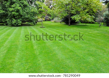 Scenic View of a Beautiful English Style Garden with a Large Open Green Grass Lawn #781290049