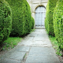 Scenic View of a Stone Paved Topiary Lined Garden Path Leading to an Old Oak Wood Doorway