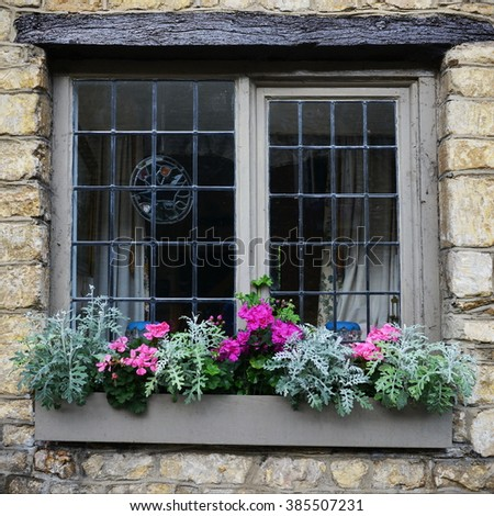 Scenic View of an Attractive Window Flower Box