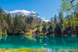 Scenic view of Blausee, a small lake in Switzerland. Spectacular view of the Blausee or Blue Lake nature park in the Bernese Alps, Kandersteg, Bern canton, Jungfrau region, Switzerland