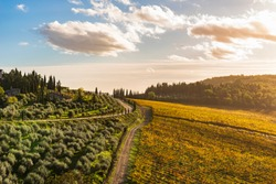 Scenic view of chianti Vineyards in autumn near the small and famous town of Gaiole in Chianti