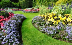 Scenic View of Colourful Flowerbeds and a Winding Grass Lawn Pathway in an Attractive English Formal Garden