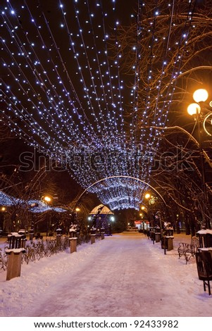 Scenic view of decorated winter city park at night