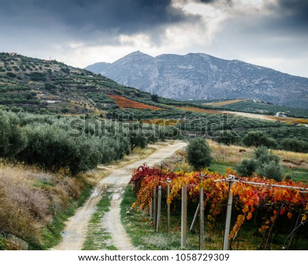 Scenic view of dirt road dirt road amidst the mountains and cultivated farm, Greece #1058729309