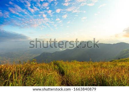 Scenic View Of Foggy Morning Sky With Rising Sun Above Misty Mountain. Fog and cloud mountain valley landscape. Beautiful nature with fog and cloud. Morning fog,Fog, Sunrise - Dawn, Tropical Climate,