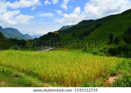 Scenic View of green mountain, Sapa, Vietnam