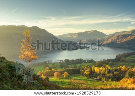 Scenic view of Lone Tree above Ullswater looking toward Glenridding from Gowbarrow Fell Stock photo ©