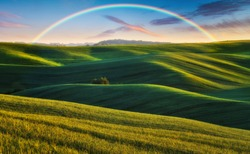 Scenic view of rainbow over green field