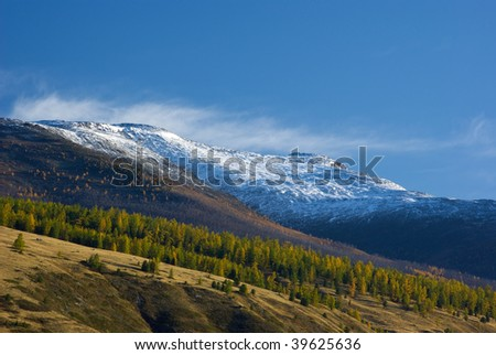 Scenic view of snowy mountain peaks and autumnal forest valley