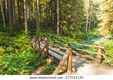 scenic view of the  bridge in Sol duc  water falls area  in mt Olympic National park,Washington,usa.