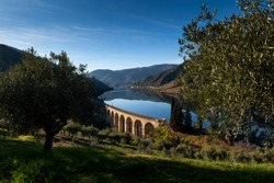 Scenic view of the Douro River with terraced vineyards near the village of Foz Coa, in Portugal; Concept for travel in Portugal and most beautiful places in Portugal