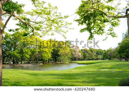 Scenic view of the park in the center of the big city in the summer. With a lagoon in the middle and green trees. In the atmosphere of evening light #620247680