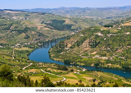 Scenic view of the vineyards on the banks of Douro river near Mesão Frio, Portugal