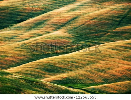 Scenic view of typical Tuscany landscape, Italy, Europe #122565553