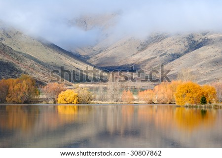 scenic view of yellow trees beside the lake