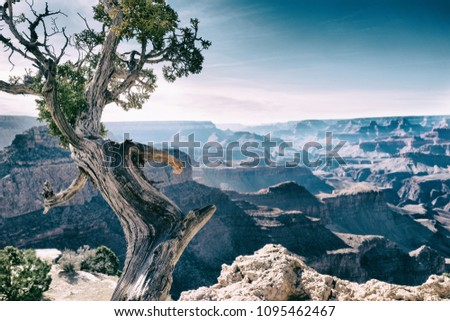 Scenic views from the South Rim of the Grand Canyon #1095462467