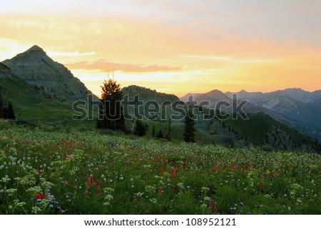 Scenic wasatch mountain sunset, Utah, USA.