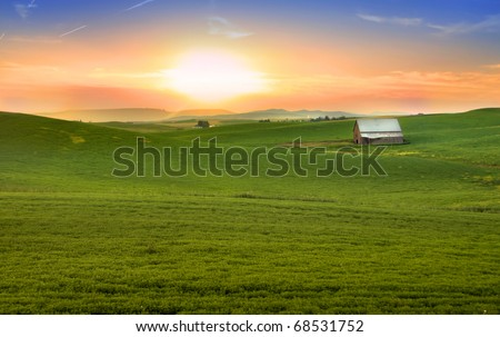 Scenic wheat fields on rolling hills in evening sunlight