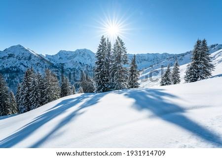 scenic winter wonderland in the Allgäu