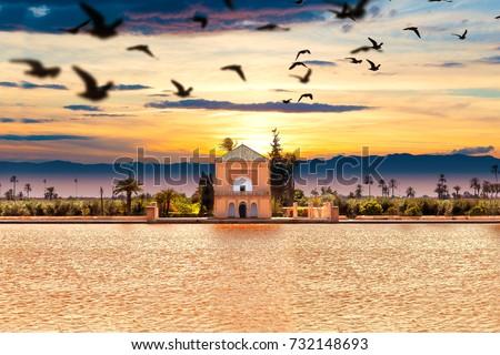 Scenical Menara garden.Travel to morocco. Marrakech Landmark and architecture.Scenic landscape.