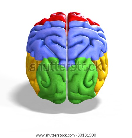 schematic illustration of a human brain with clipping path