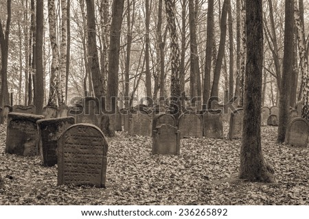 stock-photo-schesslitz-germany-april-old-jewish-graveyard-in-german-bavaria-on-april-near-236265892.jpg
