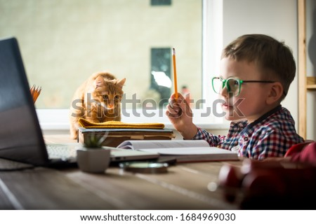 School boy working from home with funny ginger cat. Back to school. Child working on laptop.
