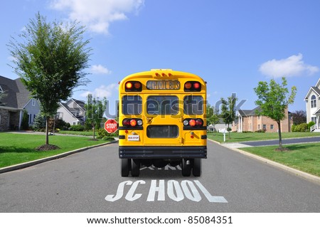 School Bus on Suburban Street with School Crossing Sign Painted on Street