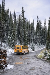 School bus parked on the road in snowy pine forest on winter at Yoho national park, Canada