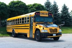 School Bus Road
