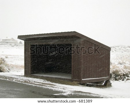 School Bus Shelter on a Snowy Day