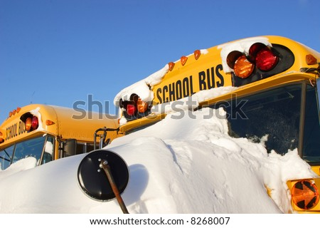 School buses in a row covered with snow on a sunny winter's day.