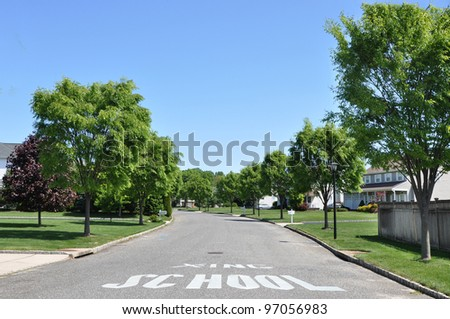 School Crossing Caution Sign on Tree Lined Quiet Sunny Beautiful Suburban Neighborhood on Blue Sky Day with Clouds