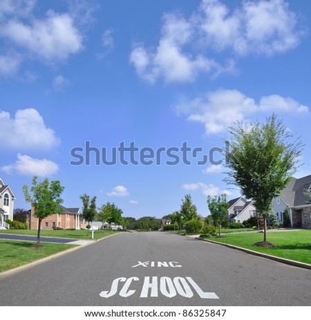 School Crossing Traffic Sign on Suburban Residential Neighborhood Street on Beautiful Sunny Blue Sky Day