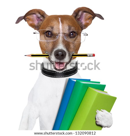 school dog with books and a pencil