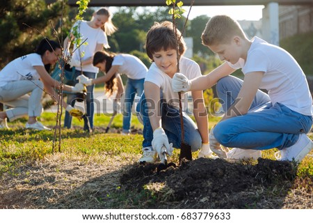 Schoolchildren planting young fruit trees
