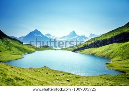 Schreckhorn and Wetterhorn from Bachalpsee lake, Bernese Oberland, Switzerland, Europe #1009095925