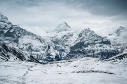 Schreckhorn on Grindelwald First in first snow