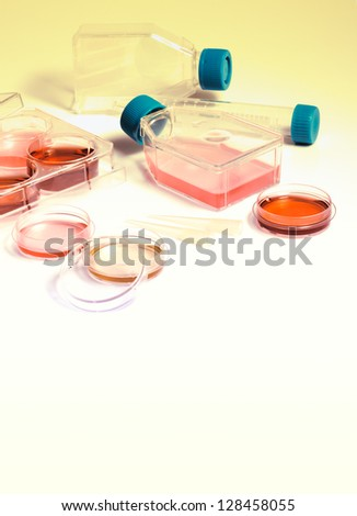 Science laboratory. Equipment and tools of scientific laboratory for experiments and research. Cell culture into plastic flasks and petri dishes for the biomedical diagnostic.