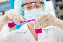 science laboratory work. female scientific researcher or doctor holding flask with pink liquid solution